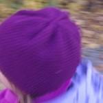 Herbst 434_quer